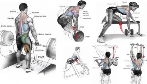8 vingrojumi spēcīgai mugurai